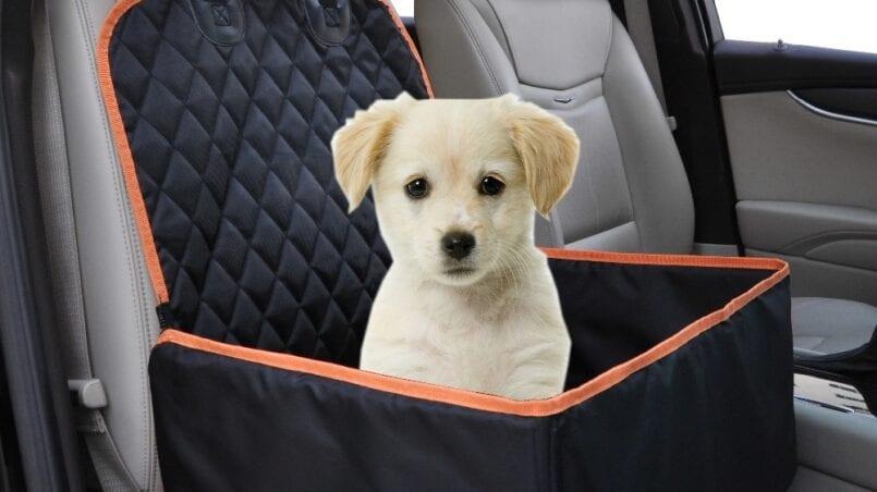 Cubre asientos coche perro